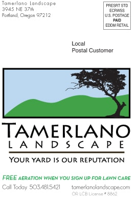 Tamerlano direct mail postcard-1