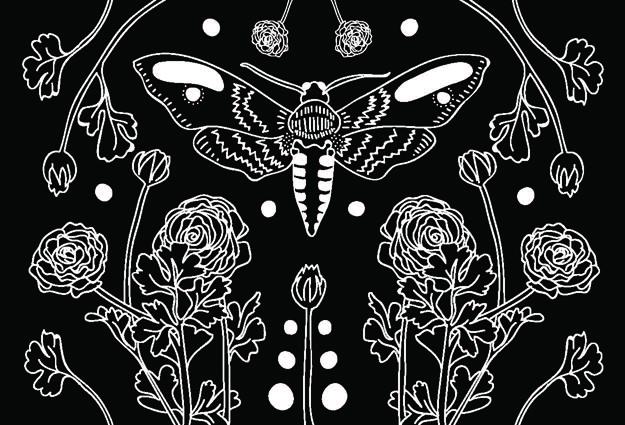mothflower